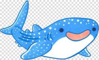 Great White Shark Whale Shark Whales Sticker Cartoon Fish Killer Whale Dolphin transparent background PNG clipart HiClipart