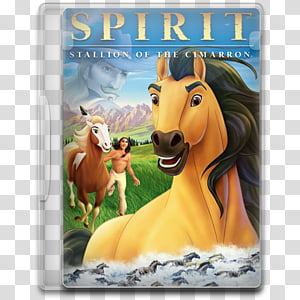 paint spirit stallion of the cimarron # 38