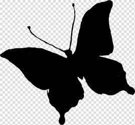 Black And White Flower Brushfooted Butterflies Silhouette Butterfly Black White M Character Leaf Plants transparent background PNG clipart HiClipart