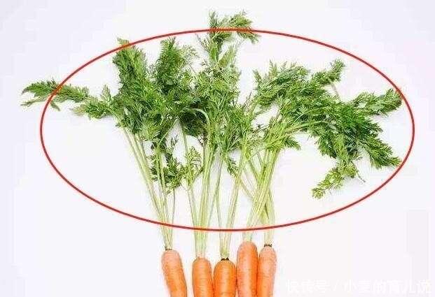 補鈣蔬菜排行榜來襲。第1名經常被扔掉。含鈣量遠比牛奶高 - 第一新聞