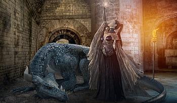 Royalty free dragon castle photos free download Pxfuel