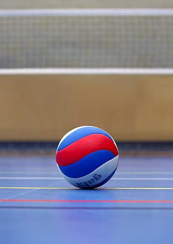 Gambar Block Bola Voli : gambar, block, Royalty-free, Volleyball, Photos, Download, Pxfuel