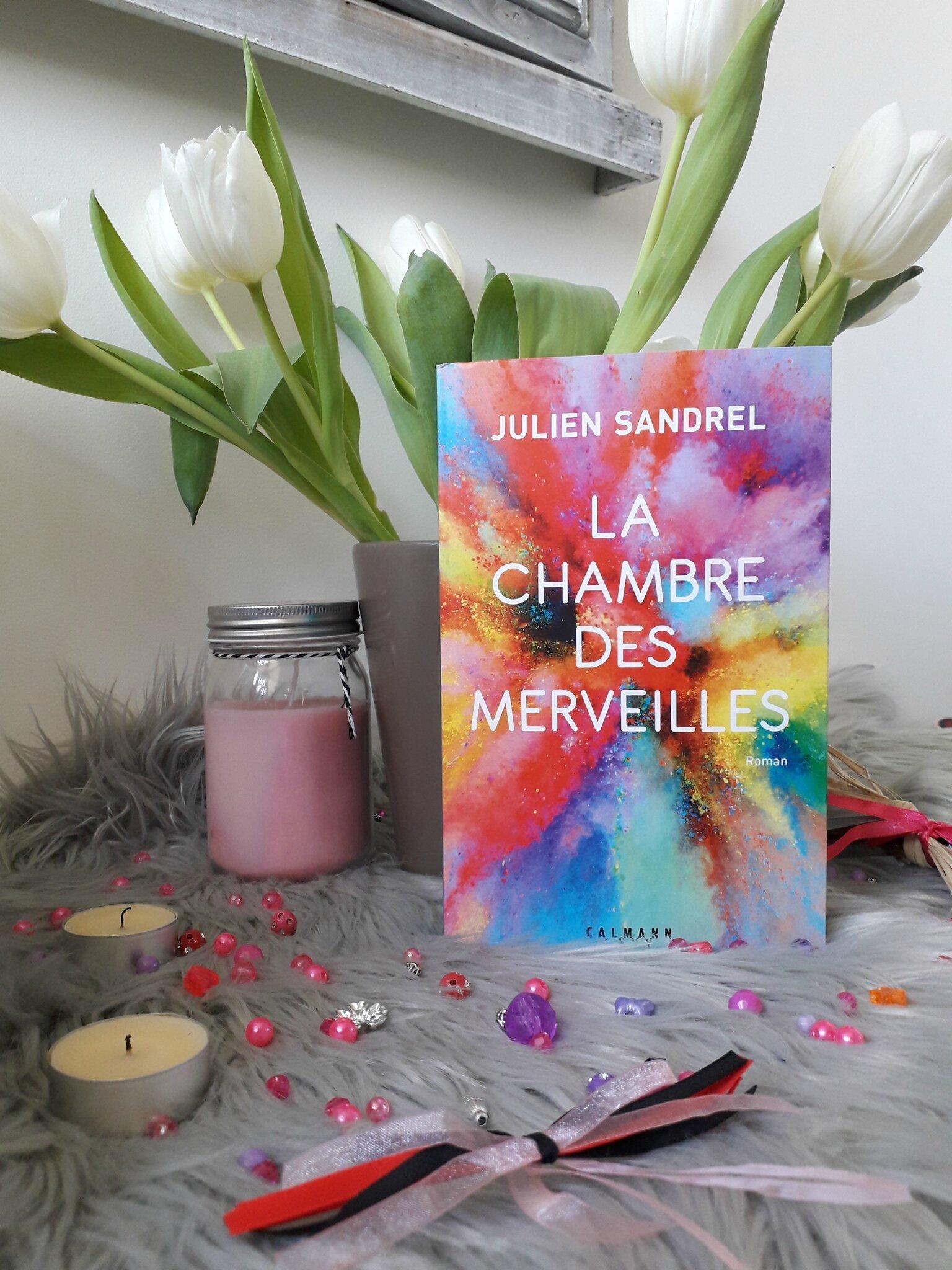 Livre La Chambre Des Merveilles : livre, chambre, merveilles, Julien, Sandrel, Chambre, Merveilles