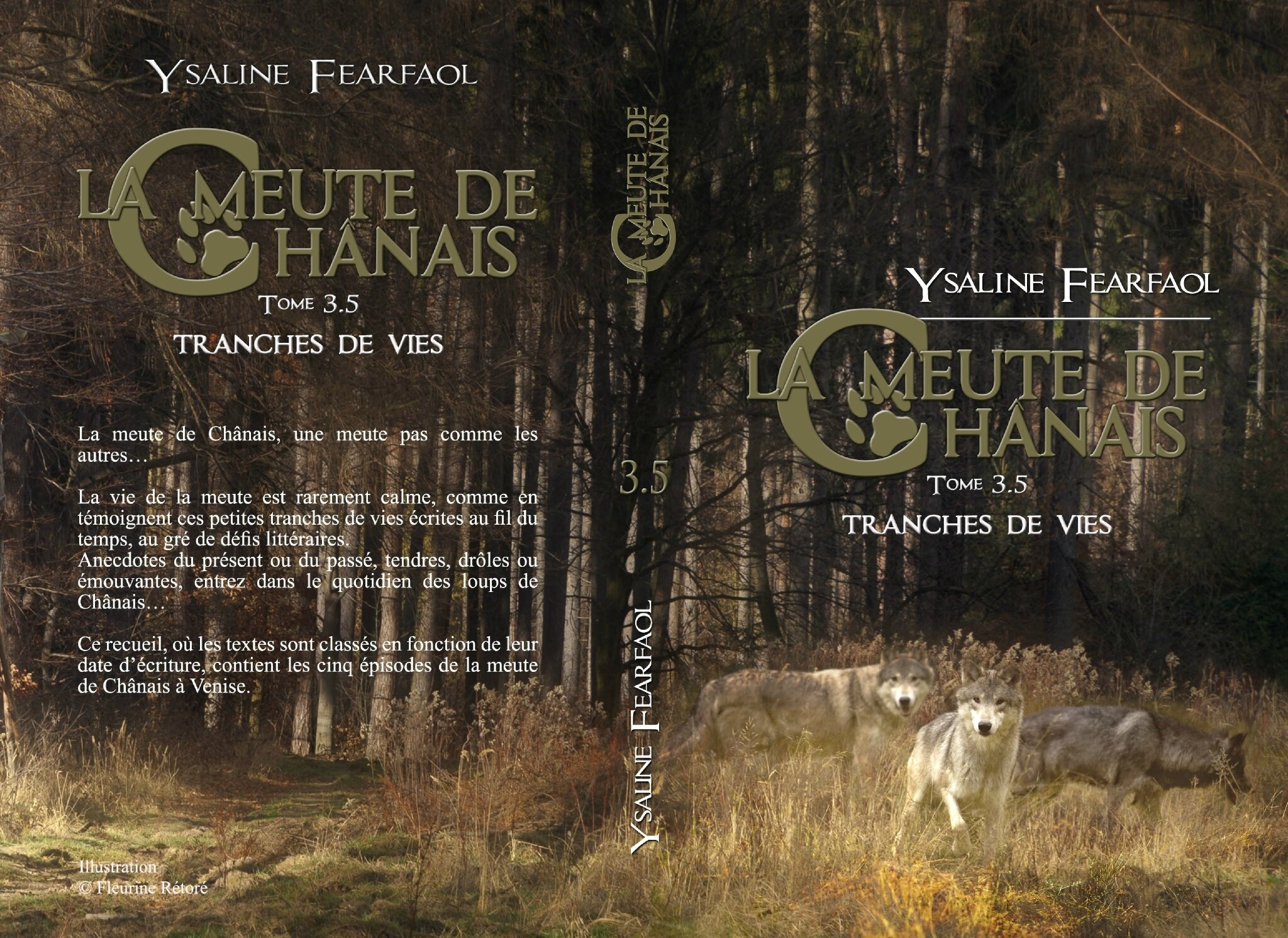 Ysaline Fearfaol Chroniques Et Autres Ecrits