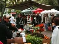 Foto: Sitio oficial Mercado el 100