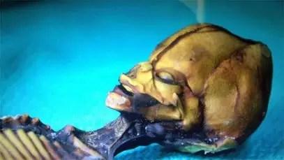 Supuesto extraterrestre hallado en Chile tiene ADN humano