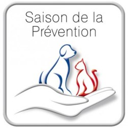 Saison de la prevention 2013