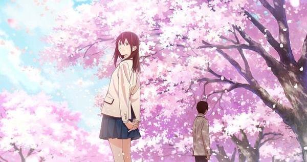 《我想吃掉你的胰臟》動畫電影公開主視覺圖 今年秋季在日本上映《Kimi no Suizou wo Tabetai》 - 巴哈姆特