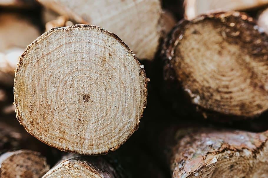 wooden logs wooden logs