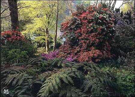gardens1_465x336