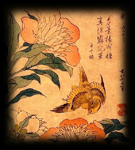 Hokuzai Katsushika (1760-1849), Canari et petites pivoines, 1834, estampe nishike-e, Japon, 24