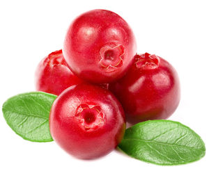 9444cranberry