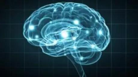 Segundo pesquisa, pessoas vêm recorrendo à internet para guardar novas informações em vez de usar seus próprios cérebros