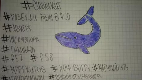 Alguns comparam a Momo com o `Baleia Azul`, um desafio que se tornou viral em abril de 2017 e sobre o qual as autoridades alertaram porque incitava o suicídio.