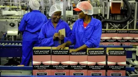 Aumento da participação feminina no mercado de trabalho ainda é um desafio