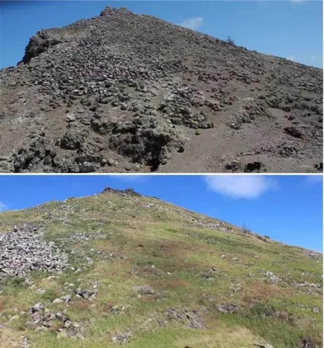 Fotos tiradas em 2012 (acima) e 2020 (embaixo) mostram a transformação da ilha