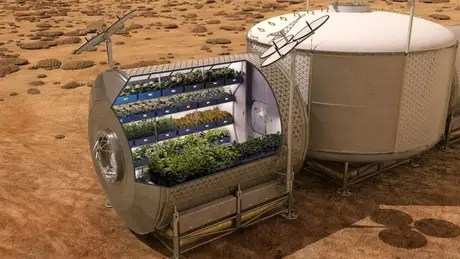 There are projects for growing plants in greenhouses in Martian soil under study