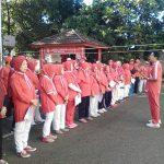 Photo of P2Tel Bandung Selatan Ikut Merayakan HUT RI ke-74