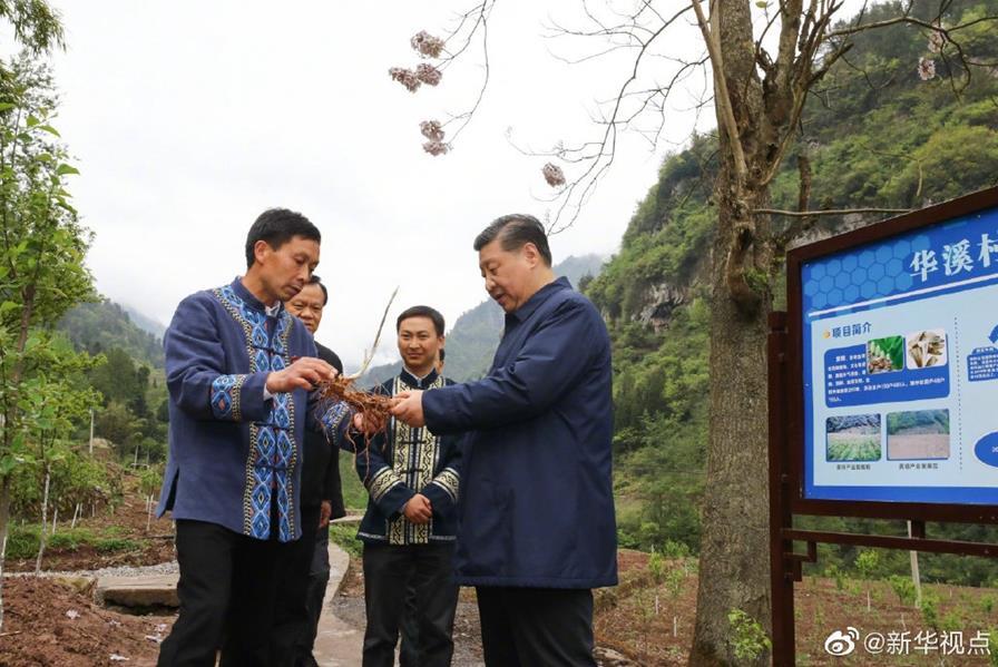 習近平在重慶考察調研-新聞頻道-華龍網