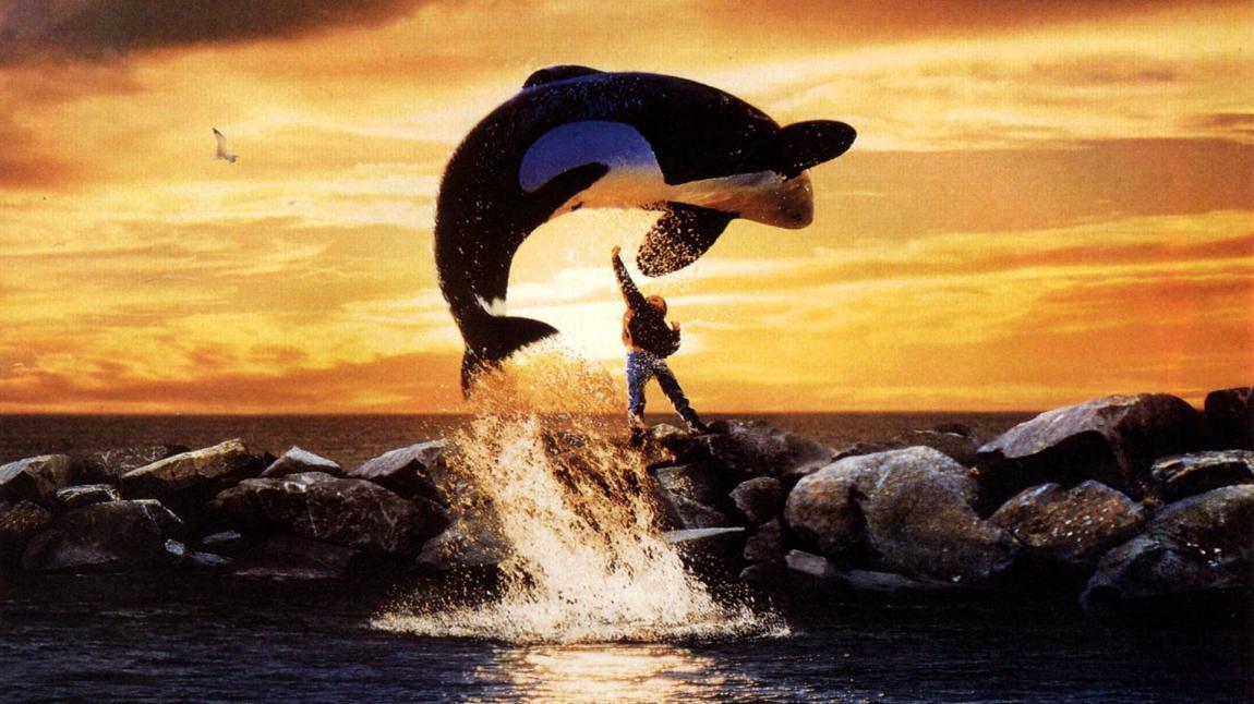 Free Willy promo. Foto: Warner Bros
