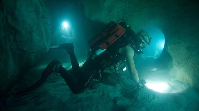 Livet under vann i Sanctum (Foto: SF Norge).