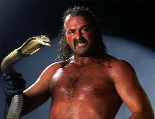 Jake the Snake (Foto: WWF/Arkiv)