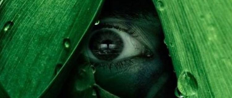 Topp 5: Film, spill, serier 2012