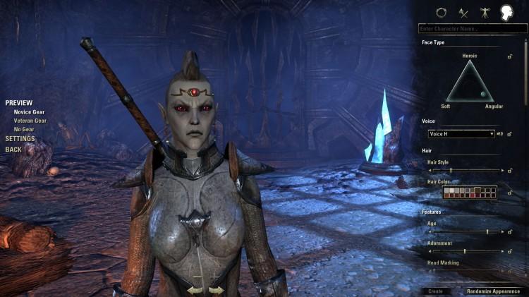 Du har vanvittig mange valg når du skal lage figuren din i The Elder Scrolls Online. (Foto: Bethesda).