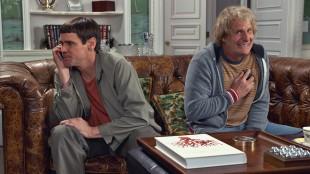 Lloyd (Jim Carrey) og Harry (Jeff Daniels) gjenforenes i Dum og dummere To (Foto: SME / SF Norge AS).