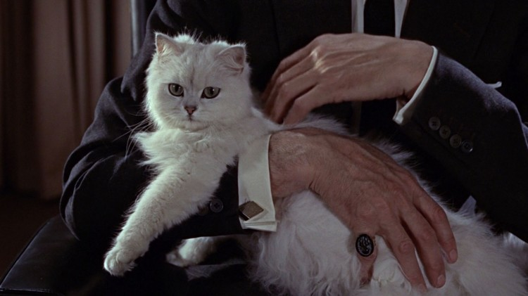 Blofeld og katta si i From Russia With Love. (Foto: SF Norge).