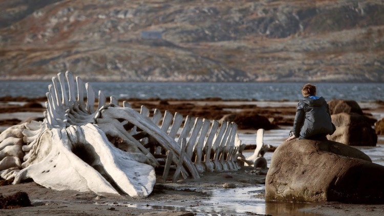 Skjelettet av noe stort er strandet i Leviatan (Foto: Arthaus).