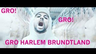 http://p3.no/wp-content/blogs.dir/52/files/2015/12/Gro-Harlem-gro-harlem.jpg