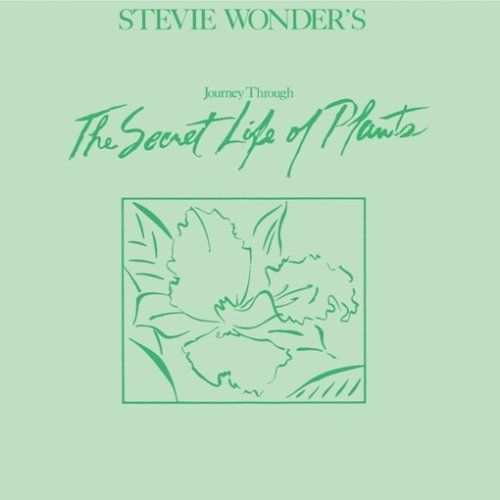 Steve Wonder - Secret Life of plants