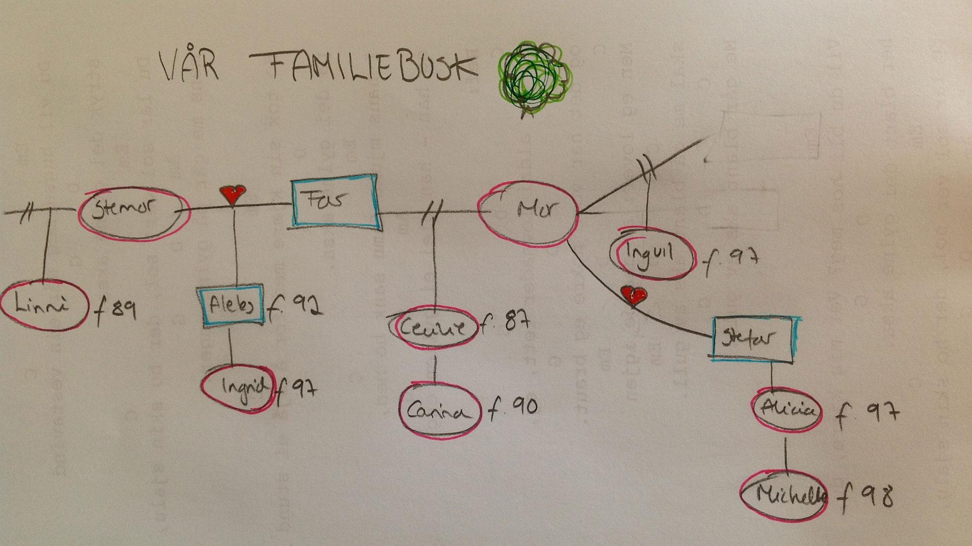 Har du en komplisert familie?