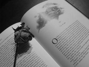 livre