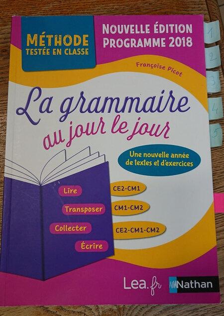 La Grammaire Au Jour Le Jour : grammaire, Grammaire, Jour,, Picot,, (violet), Plume, Craie,, Classe, Stéphanie...