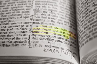 IMG 2186copy 1024x682 - thoughts: proverbs 3:5