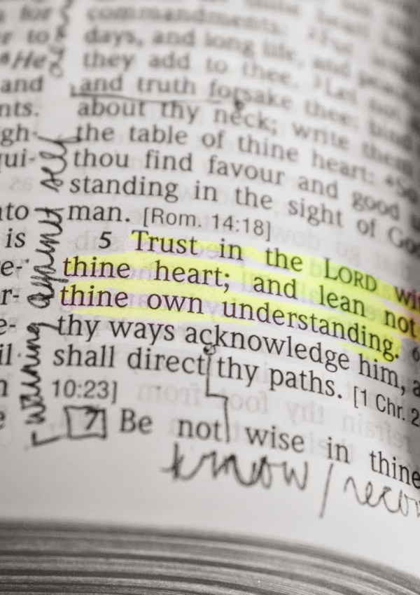 thoughts: proverbs 3:5