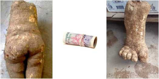 How To Pick Money From The Floor Without Turning To Yam   Zikoko!