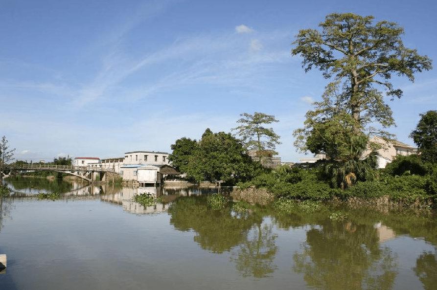 珠海最低調的城中村:家家戶戶都有「小別墅」,網友:不愧是珠海