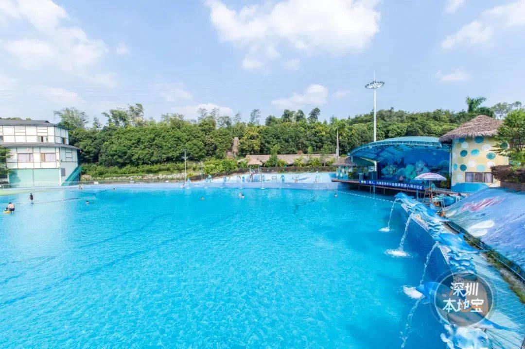 最新!深圳這些游泳館,水上樂園已開放!但大多需提前預約!_微信
