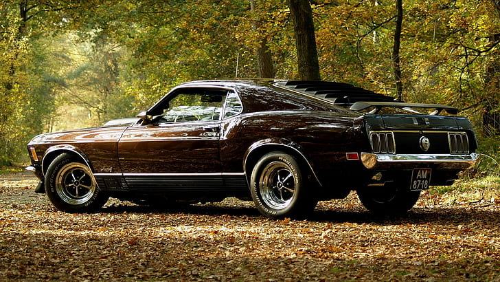 1969 ford mustang fastback sportsroof mach1 shelby 302 automatic no reserve. Ford 1969 Lampu Ford Mustang Muscle Car Mach 1 Classic Car Sports Car Wallpaper Hd Wallpaperbetter