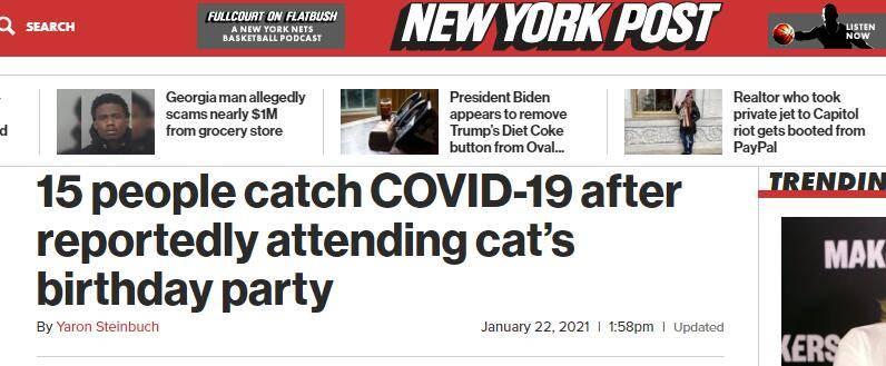 智利15人参加猫咪生日派对后感染新冠