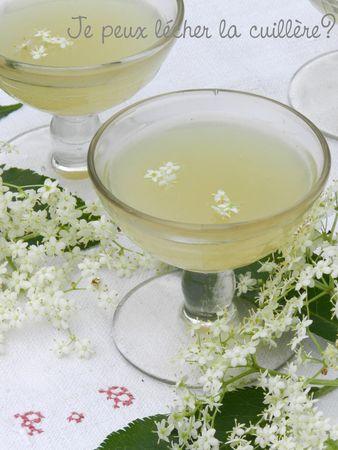 Recette Fleur De Sureau : recette, fleur, sureau, Sureaunade, Pétillant, Fleurs, Sureau}, Lécher, Cuillère?