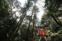 L'allée d'accès au sanctuaire, près du sommet de Inariyama