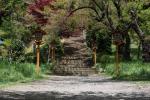 chureito-pagoda-400