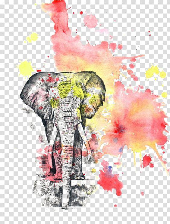 elephant illustration watercolor flowers