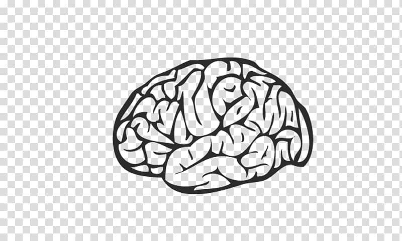 Brain illustration, Episerver the Missing Manual