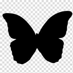Brush footed butterflies Butterfly Silhouette Butterfly silhouette transparent background PNG clipart HiClipart
