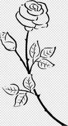 Black And White Flower Outline transparent background PNG cliparts free download HiClipart